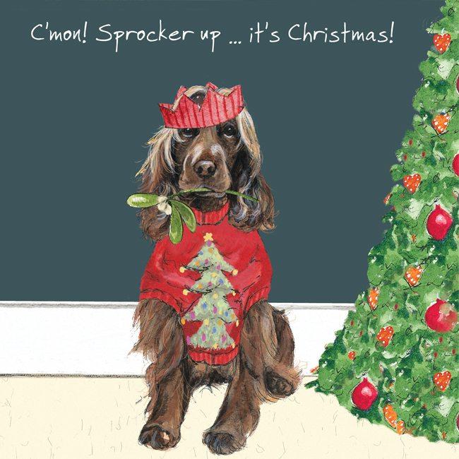 Dog Christmas Card Photo.Sprocker Dog Christmas Card Sprocker