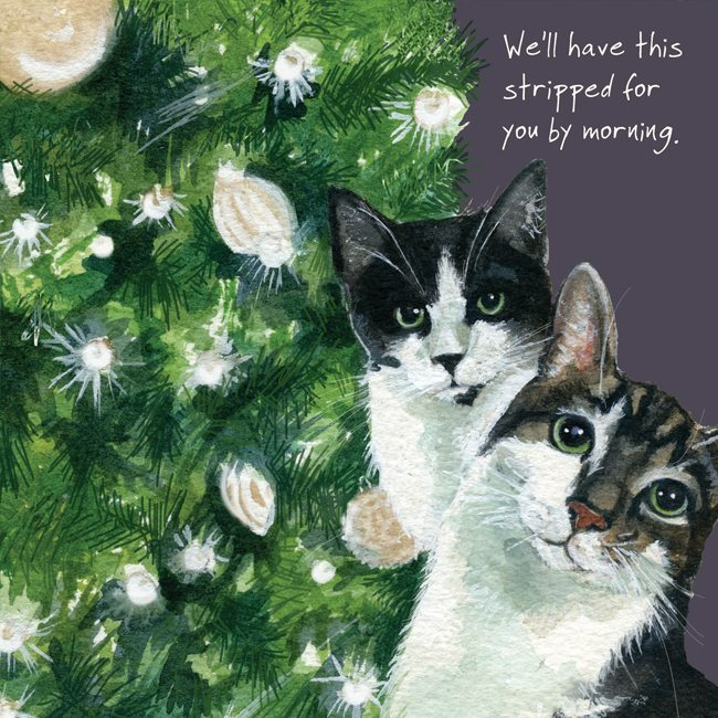 Moggie Cats Christmas Card , Stripped