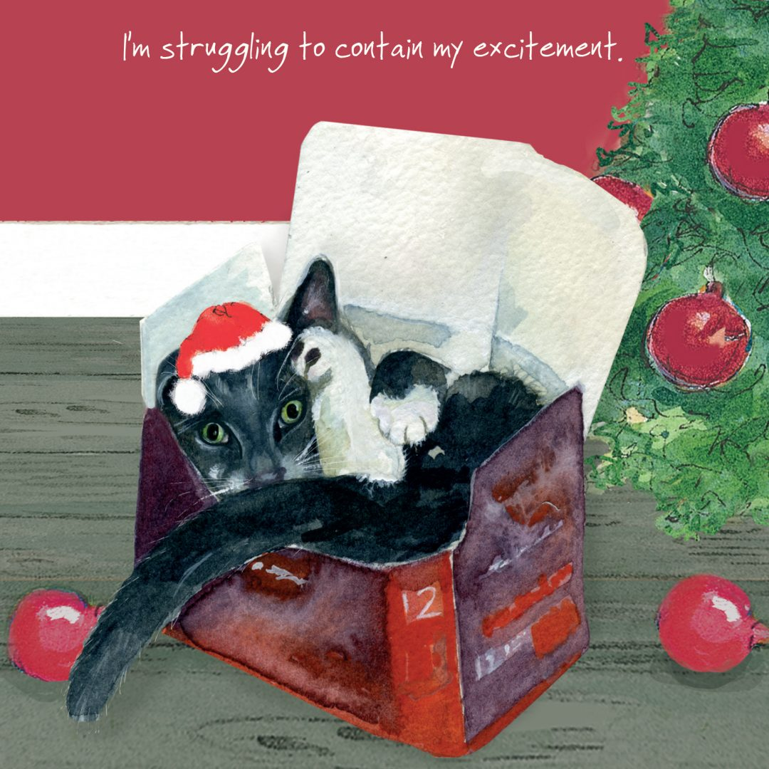 Cat Christmas Card - Struggling - The Little Dog Laughed