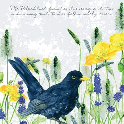 Bird Cards & Gifts