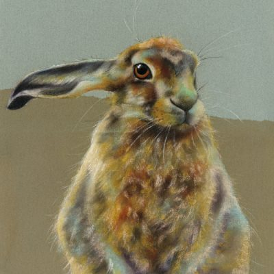 Hare Cards & Prints